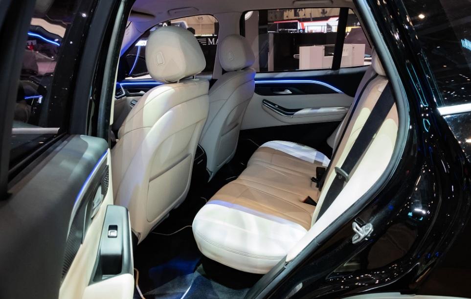 VinFast LUX V8 Limited Edition