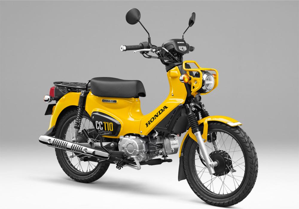 สีเหลือง-ดำ