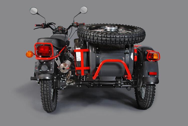 Ural Red Sparrow 2020