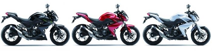 สี Kawasaki Z250 2013