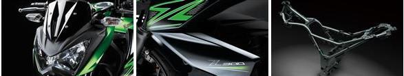 Ninja Kawasaki Z300