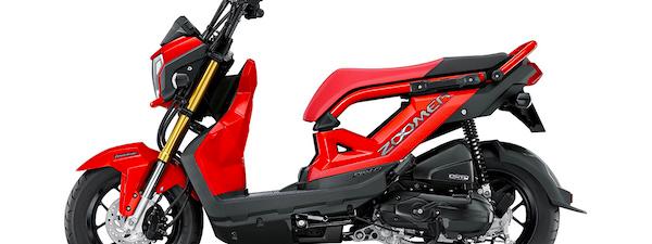 New Honda Zoomer-X โฉมใหม่