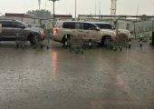 จอดรถตากฝนทำให้สีรถหมองและลอกจริงหรือไม่???