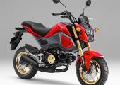 รู้จัก Honda MSX 125 2019 มินิไบค์แนวสตรีต ลุ้นเปิดตัวโฉมใหม่ภายในปี 2563
