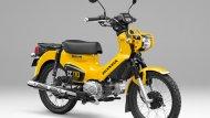 สีเหลือง-ดำ - 5